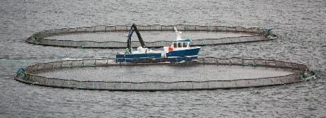 Intensive Fish Farming  Aquaculture  General Aquaculture