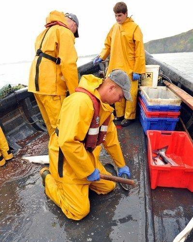Usan Fisheries